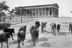 Athens 1917 Benaki Museum Ancient Agora
