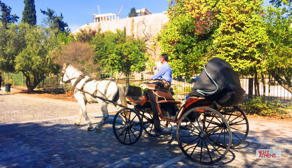 Greece for Kids Athens Families Horse Buggy