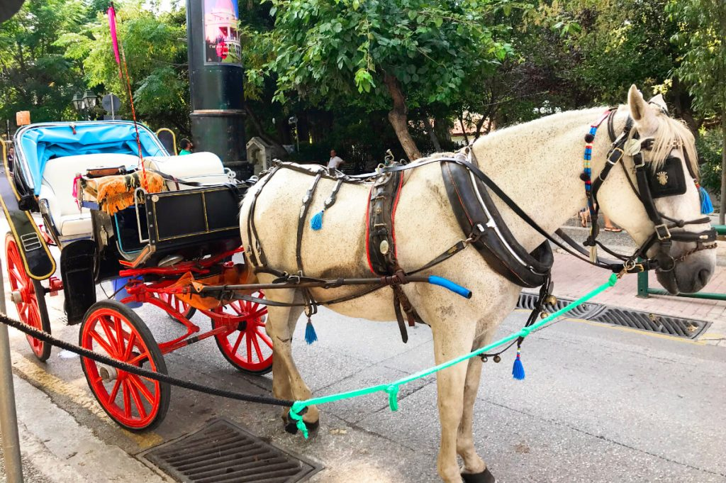 Kifissia Athens Shopping Horse Carriage